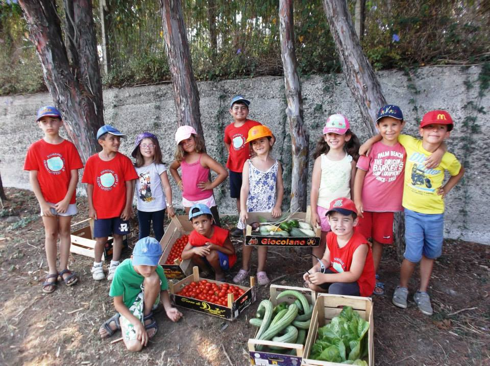 La raccolta all'orto di Gigliopoli